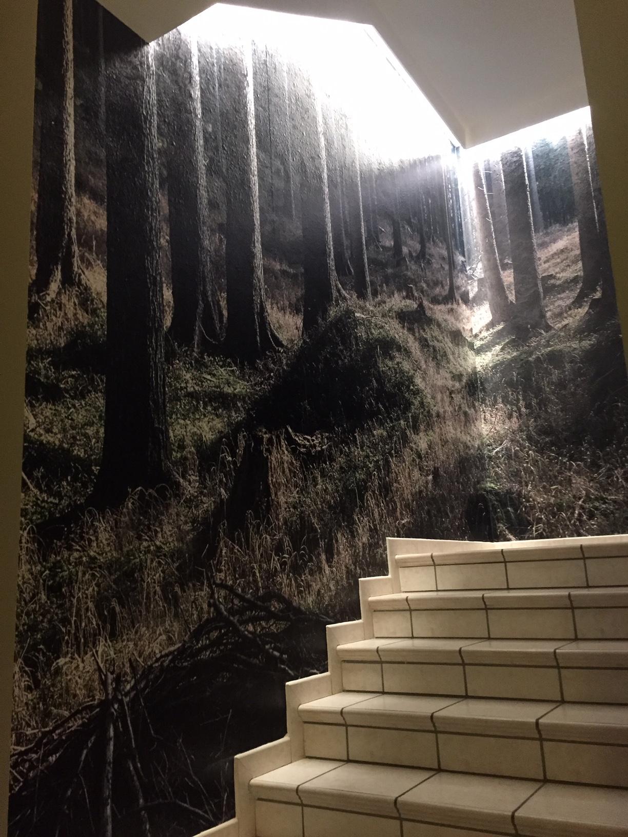 Allestimento adesivo effetto stucco – Hotel Erica a Stava, Tesero